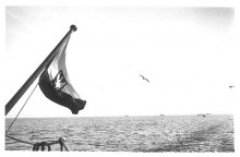 Płyniemy pod Polską Banderą